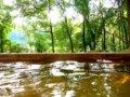 母の日は温泉旅行をプレゼント!京都など関西の人気温泉地はどこ?