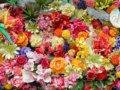 母の日は花ブーケをプレゼント!種類の選び方、花言葉で母親に感謝を