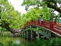 福岡でプロポーズにおすすめな場所【人気スポットランキング10】